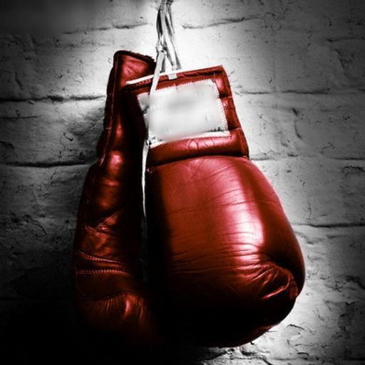 Boxing Live wallpaper