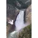 The Discovery of Yellowstone logo