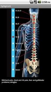 Hartman Chiropractic, P.C. - screenshot thumbnail