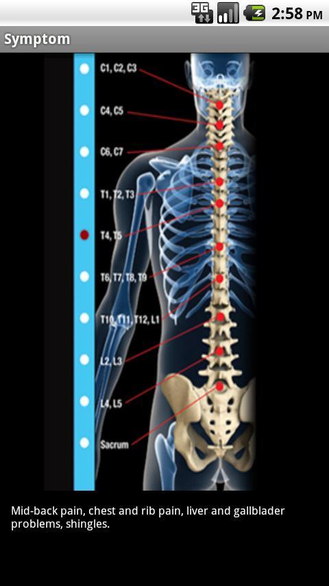 Hartman Chiropractic, P.C. - screenshot