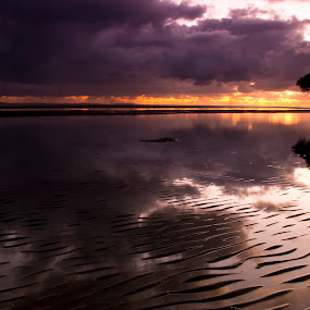 ripples at sunrise by Craig Mc P - Landscapes Waterscapes ( queensland, ripples, reflections, sunrise )