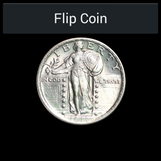 Wear Heads or Tails Flip Coin