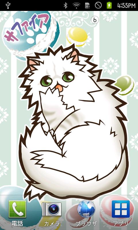LiveWallpaper Persian Cat Days- screenshot