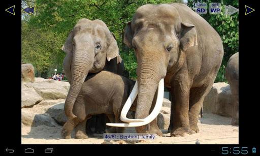 大象庫HD