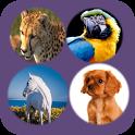 Color Animals 4 Doodle Scratch icon