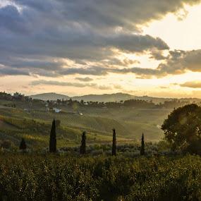 by Andrea Magnani - Landscapes Mountains & Hills ( hills, backlight, andrea magnani fotografia, sunset )