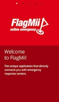 Screenshot of FlagMii