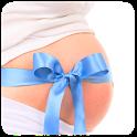 El Embarazo Semana a Semana icon