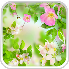 Gentle Flowers Live Wallpaper icon