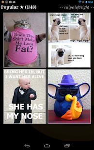 玩漫畫App|Funny Pics LOL!免費|APP試玩