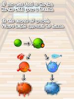Screenshot of Marimo Dungeon