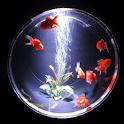 Cool of Goldfish(JP134) icon