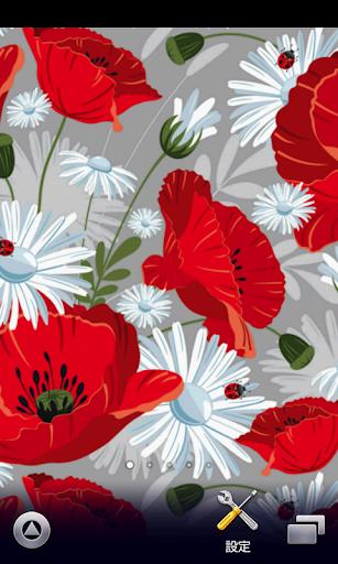 花卉花卉壁纸