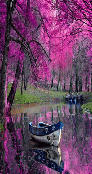 Beautiful live wallpapers android apps on google play for Decor live beautiful app