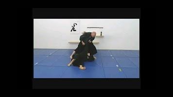 Screenshot of Ninjutsu Movements