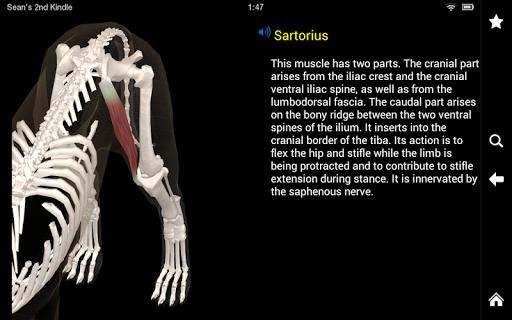 【免費醫療App】Dog Anatomy: Canine 3D-APP點子