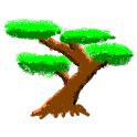 Bonsai 2D Tree Simulator icon