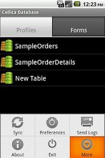 Cellica Database Internet MS Access,SQLServer form- screenshot thumbnail