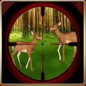 Deer Hunt Excitement