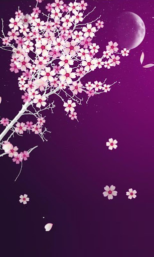 Sakura Flower Live Wallpaper