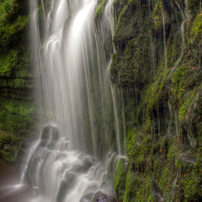 Scaleber falls, Yorkshire by Chris Duffy - Landscapes Waterscapes ( water, detail, yorkshire, waterscape, waterfall )