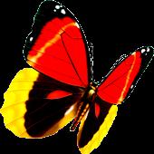 Butterfly Lianliankan(Free)