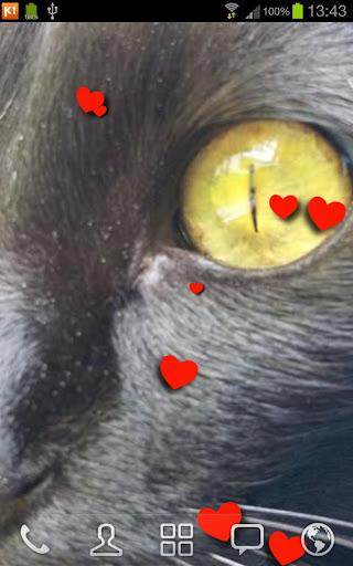 Cat Milu LWP FREE