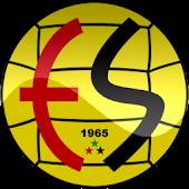 Eskişehirspor Haber