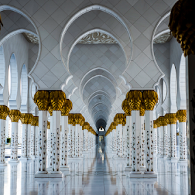 Sheikh Zayed Mosque by Aamir Munir - Buildings & Architecture Places of Worship (  )