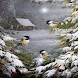 Birds Snow Storm Live Wallpape