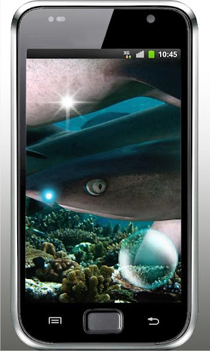 Shark Tiger HD live wallpaper