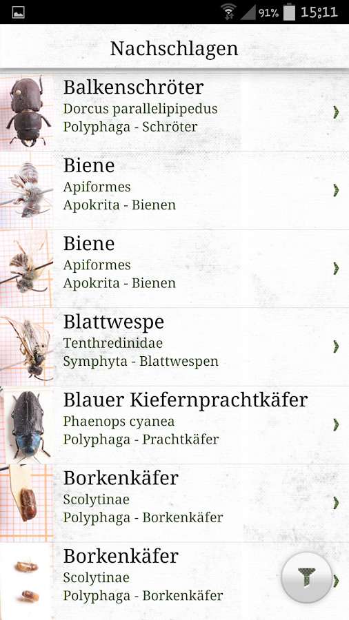Käferkunde – Screenshot