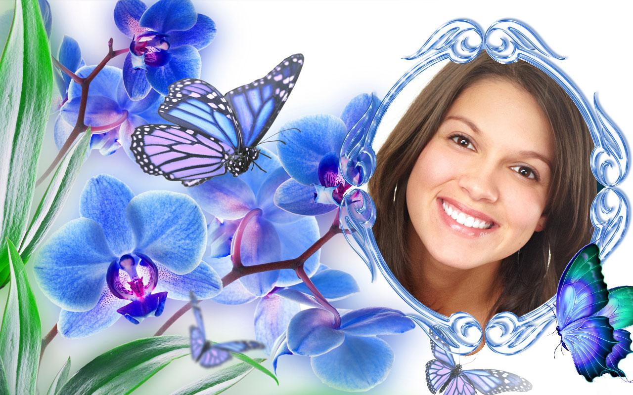 butterfly frames editor pro screenshot