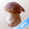 Myco pro - Guida ai Funghi icon
