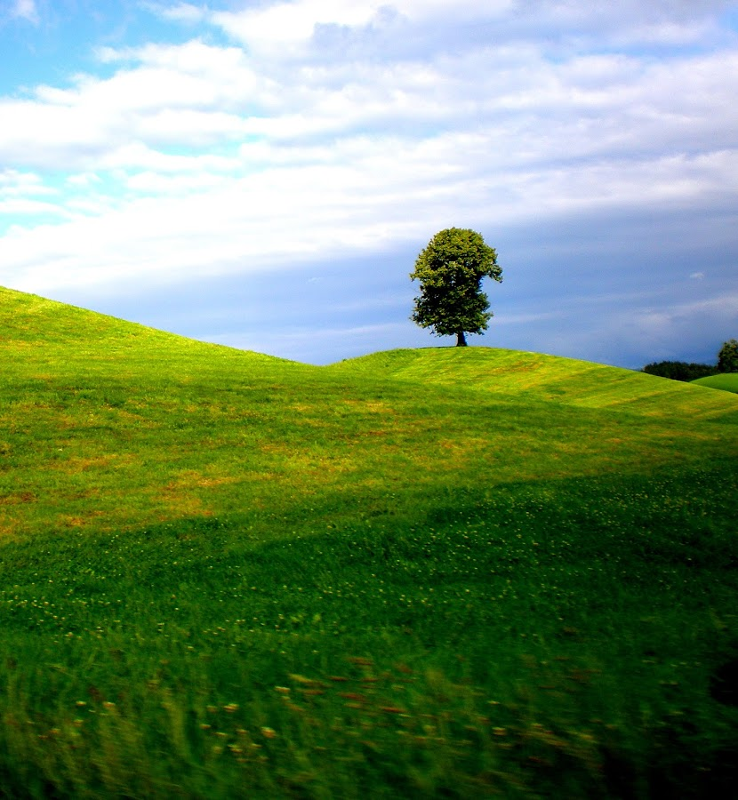 by Elizabeta Ceraj - Landscapes Mountains & Hills