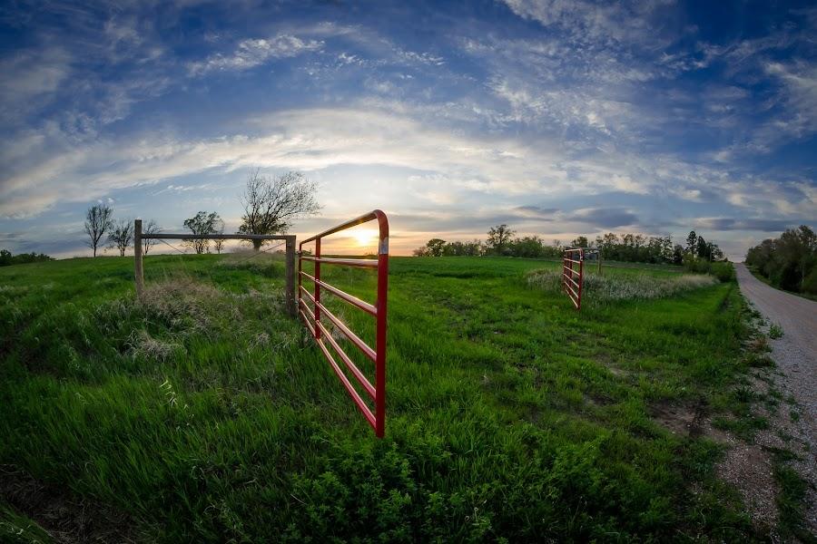 Nebraska Sunset by Sara Sawatzki - Landscapes Prairies, Meadows & Fields ( farm, sunset, landscape, nebraska )