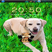 Go Locker Labrador Dog Theme