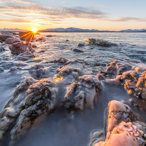iced rocks by Benny Høynes - Nature Up Close Rock & Stone ( water, winter, cold, ice, sea, rocks )