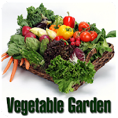 Vegetable Garden Guide
