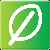 Springleaf Mobile