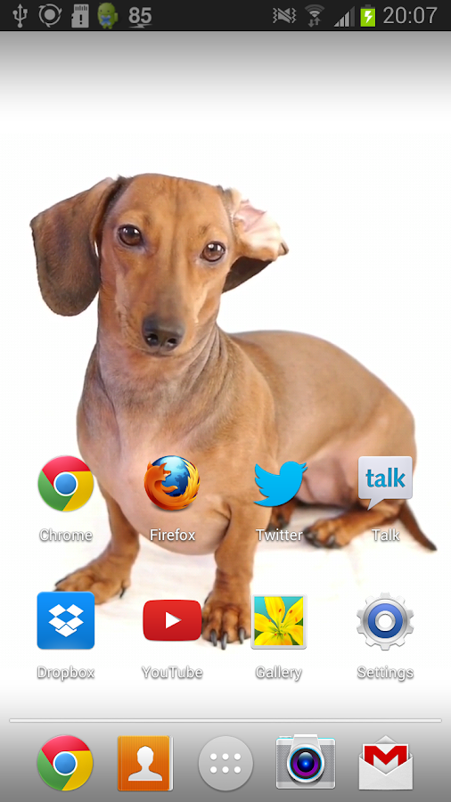 Dachshund Dog Live Wallpaper Android Apps On Google Play