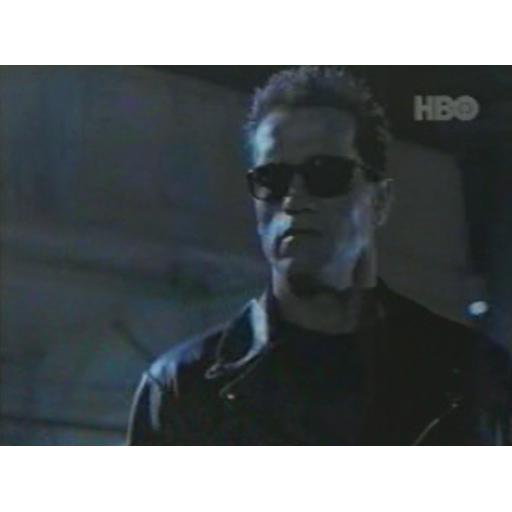 Terminator 2 Widget