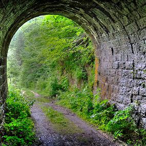 tunel2 15.07.20014.jpg