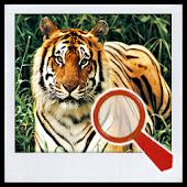 Find It 2™ (no ads)