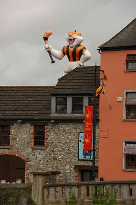 Kilkenny cats - cat on roof