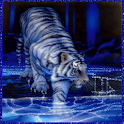 Tiger in water electric LWP logo
