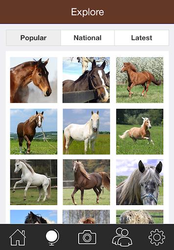 Horse Snap 運動 App-愛順發玩APP