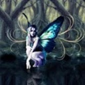Tarot of the fairies premium