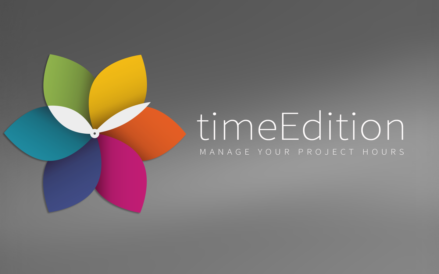 timeEdition - Time Tracking- screenshot