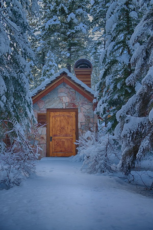 In the Woods by Stacy White - Buildings & Architecture Other Exteriors ( cabin, winter, snow, path, trees, snowing,  )